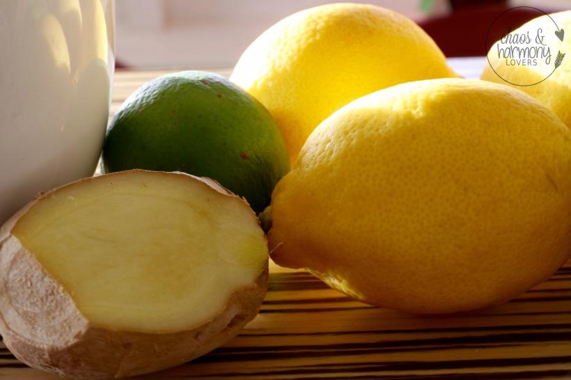 Zitronen, Ingwer, Limette